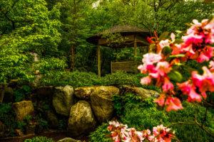 Tiki hut at the Japanese garden in Rockford Illinois
