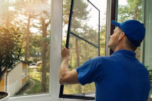 Worker installing mosquito net in window